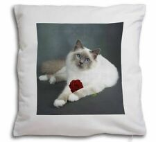 Cat Decorative Cushions