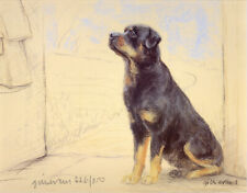 More details for rottweiler german dog fine art limited edition print - rotty - rottie