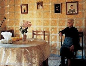 BERT TEUNISSEN Domestic Landscape SIGNED Photograph 'Pino del Oro #3' 2005 14x17