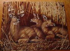 Deer Buck Doe Family Hideaway Ducks Unlimited Cabin Lodge Home Decor Sign New