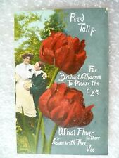 Postcard- Red Tulip For Brilliant Charms to Please the Eye what Flower is there