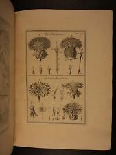1700 1st ed Institutiones Herbariae Tournefort PLANTS Herbal Illustrated Botany