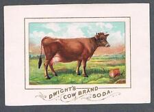 Original 1910's Dwight's Cow Brand Soda Advertising Trade Card