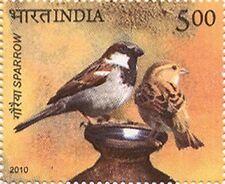 PHILA2613 INDIA 2010 BIRDS OF INDIA SPARROW MNH