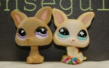 Littlest Pet Shop Puppy Dog Lot of 2 Chihuahua