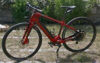 Specialized Turbo S E-Bike High End Elektro Fahrrad Pedelec Bike 45km/h wie neu