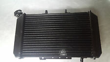 OEM Hyosung Radiator GT650 GT650R GT650S P/N 69609HN9100 BRAND NEW