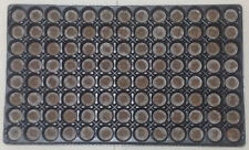 Jiffy 7 Peat Pellet Tray 104 Cell 30mm Jiffy with Tray Ready for Cloning Seeds