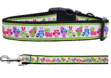 Mirage Easter Birdies Nylon Dog Collars and Leash Combo