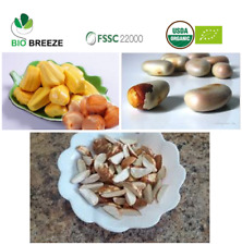 DRIED JACK FRUITS SEEDS (PIECES), 100% Organic, - FOB 13 $/ kg