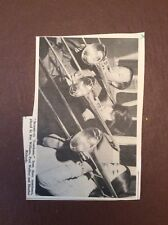 M62-7 Ephemera 1973 Picture Cornwall Trombone Players Roy Williams Wallace Paul