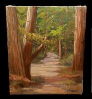 VINTAGE ELMER STEINMEYER FOREST LANDSCAPE OIL PAINTING REDWOOD TREES CALIFORNIA