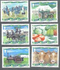 Guernsey-LO SPETTACOLO WEST SERIE Gomma integra, non linguellato-Trattori-Mucche MACCHINE A VAPORE-Cavalli