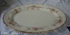 Superb PARAGON VICTORIANA ROSE Meat Platter