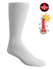 Wigwam Ultimate Liner Pro - MEDIUM, Crew, Warm Weather Liner Socks, F6089
