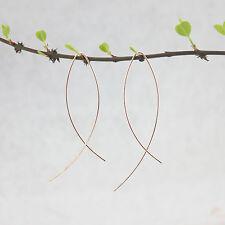 Fashion Earrings for Women Simple Hoop Earrings Copper Fish Threader Earrings