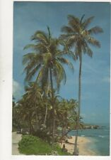 Martins Bay St John Barbados Postcard 171b