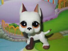 *LPS Petshop Chien Dogue Argentin * Pet shop Danois Great Dane Dog * #750 NEUF
