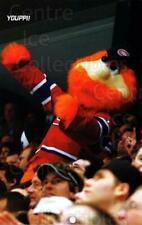 2009-10 Montreal Canadiens Postcards #32 Mascot