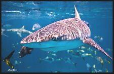 "Realfish H20 Series: Shark "" In Your Face "" Fish Mat, Floor Mat, Doormat 24x36"