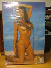 Playboy vintage beach scene Poster original