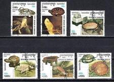 Animali Tartarughe Cambogia (179) serie completa 6 francobolli timbrati
