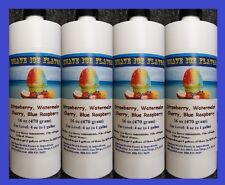 Hot Selling Shave Ice Flavor 16 oz x 4 - Cherry, Strawberry, Watermelon, etc