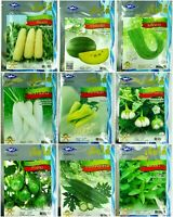 ChiaTai Vegetable Garden Seeds Pure Natural Organic Wholesale Plant Quality #7
