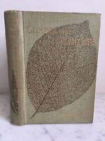 Vislumbres Into Vida Vegetal Mrs Brightwen F. E. S T. FISHER Unwin 1897