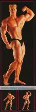 DOOR POSTER :BERRY DeMAY - SEXY MALE MODEL  -  FREE SHIPPING #22187   RC32 A