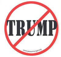 MS155-X - Anti Trump Text Anti President Donald Trump Mini Sticker