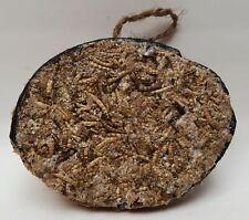1/2 Kokosnuss gefüllt mit Mehlwürmer, Insekten, Fettfutter