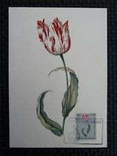 NIEDERLANDE MK 1960 FLORA BLUMEN MAXIMUMKARTE CARTE MAXIMUM CARD MC CM c1507