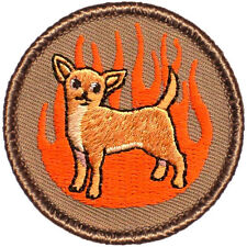 HOT DOG!!! Boy Scout Patch- Flaming Chihuahua Patrol! (#353)