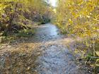 GOLD MINE Historic Townsend MT Rowdy Yates Placer Gold Mining Claim