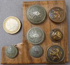 7 bouton militaire anciens Lion ( belge)  Aigle couronné ( allemagne )  button