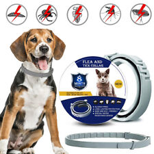 Anti Insect Flea and Tick Collar For Pet Dog Cat Adjustable 8 Month Protection