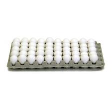 0205 Quail Egg Trays Cardboard Cartons Pkg 15