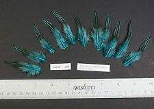 """Eleven ~2.5"""" Dyed Bright Aqua Grey Jungle Fowl Cock Hackle Feathers Fly Tying"""