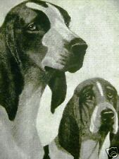 BERT COBB Joseph Thomas FOX HOUNDS 1931 Print Matted