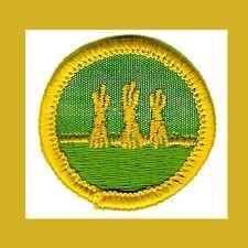 Girl Scout Cadette Badges for sale | eBay