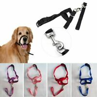Pet Mouth Traction Set Dog Muzzle Strap Puppy Head Collar Halter Nose Reigns AU