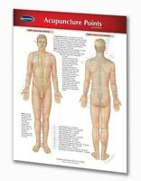 Acupuncture Points Chart - Quick Reference Guide
