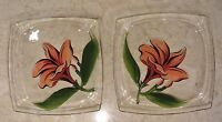 Set of 2 Clear Glass Hand Painted Plates With Pink Flowers
