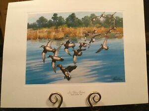 "Richard E. Bishop's Vintage Print ""IN THEY COME"" GREEN-WINGED TEAL Ducks"