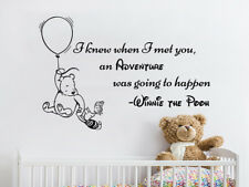 Winnie The Pooh Wall Decal Quote I knew when i met you an Adventure Decor NV301