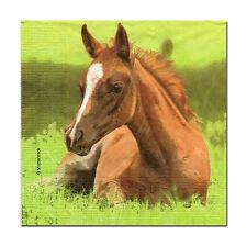 4 Motivservietten Servietten Napkins Tovaglioli Basteln Pferd Fohlen (313)