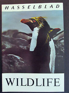 HASSELBLAD WILDLIFE 23 page Booklet Brochure Catalog Guide Penguin cover