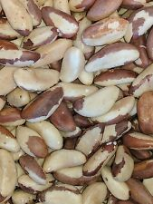 Fresh Premium RAW Whole Midget Brazil Nuts Shelled No Shell - Choose your Weight