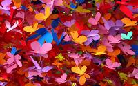 Paper Butterflies Home Decor Canvas Print A4 Size (210 x 297mm)
